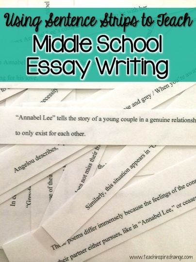 Fun \ Educational Middle School Essay Writing with Sentence - school essay