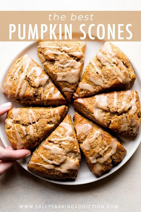 Delicious and flaky pumpkin scones with maple icing! The best pumpkin spice fall… Delicious and flaky pumpkin scones with maple icing! The best pumpkin spice fall breakfast! Easy scone recipe on sallysbakingaddic… Fall Recipes, Holiday Recipes, Easy Pumpkin Recipes, Pumpkin Scone Recipe Easy, Thanksgiving Recipes, Best Pumpkin Muffins, Pumpkin Pancakes, Thanksgiving Parties, Fall Breakfast