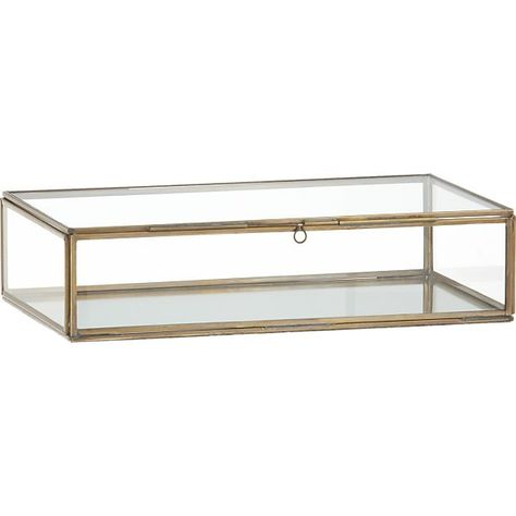 Awesome Clarus Small Brass Display Jewelry Box High Decor Dailytribune Chair Design For Home Dailytribuneorg