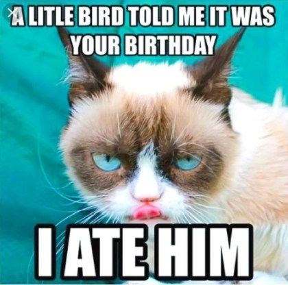 27 Adorable Cat Birthday Meme 2019 Grumpy Cat Birthday Funny