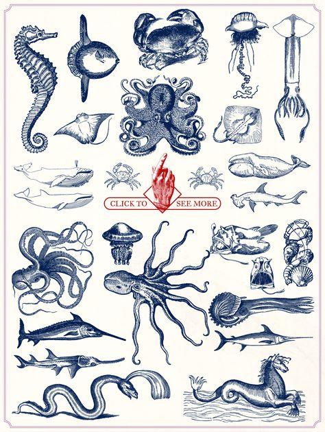 Vintage Nautical Illustrations by Mr Vintage on @creativemarket