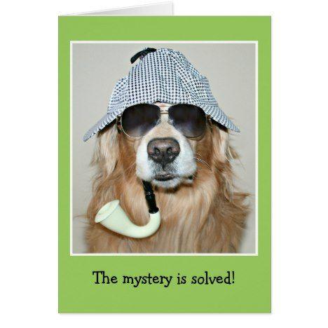Repin Alcottgear Happy Birthday Dog Happy Birthday Golden
