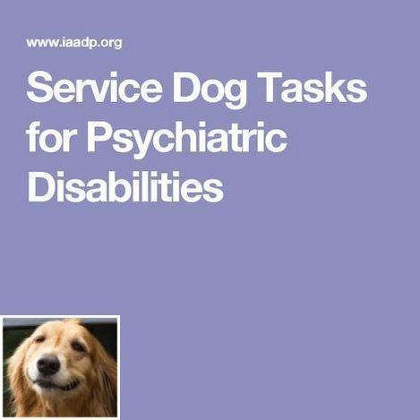 Best Obedience Training Dogtrainingdog Dogtraininghacks Dog