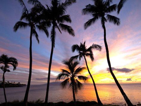 Sunset, Napili Bay, Maui, Hawaii Photographic Print by Douglas Peebles at AllPosters.com