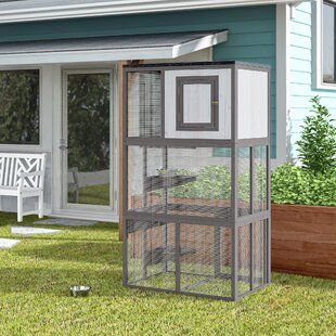 Tucker Murphy Pet Pickell Portable Outdoor Cat Cage With Door Outdoor Cat Enclosure Outdoor Cat Cage Cat Cages