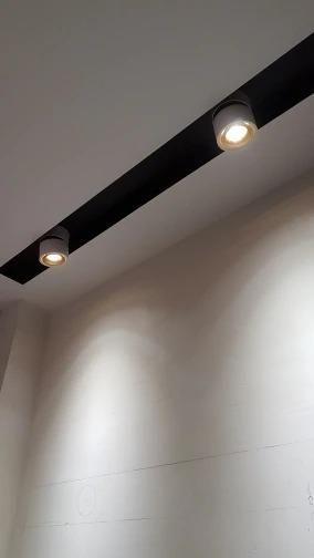 Firmament Lighting Store Led Surface Mounted Ceiling Lamp