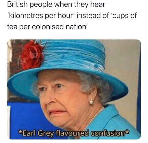Queen Elizabeth Memes, Funny Cute, The Funny, British Memes, British Slang, British People, Marriage Humor, Relationship Memes, Relationships