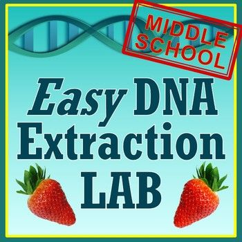 Middle School Strawberry Dna Extraction Lab Activity Dna Extraction Lab Middle School Dna Activities