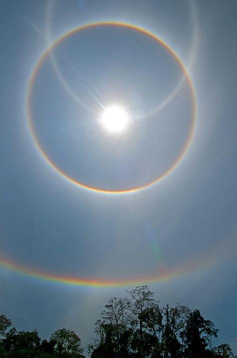 """Best"" High Solar Halo Photos Ever Captured in Tambopata"