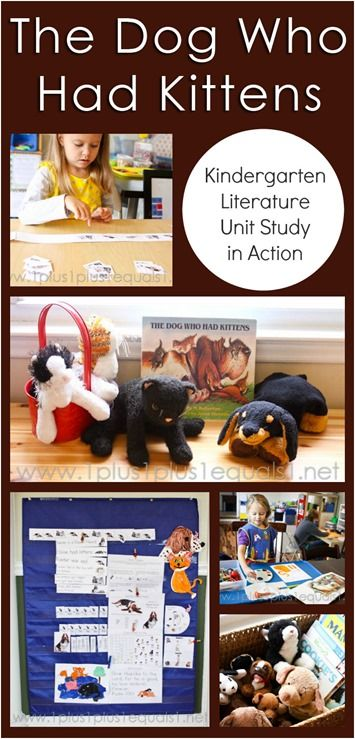 Kindergarten Literature Unit In Action ~ The Dog Who Had Kittens