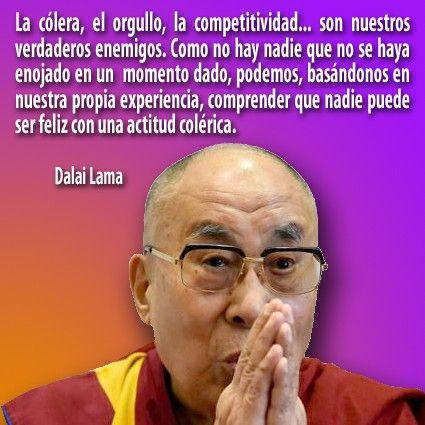 57 Dalai Lama Ideas Dalai Lama Words Inspirational Quotes