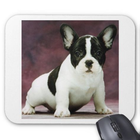 Shop Brindle_pied_french bulldog puppy mouse pad created by BreakoutTees.