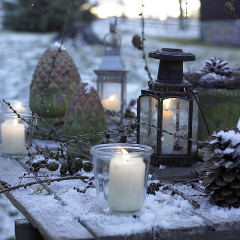 Snow... Branches... Candles... Lanterns...