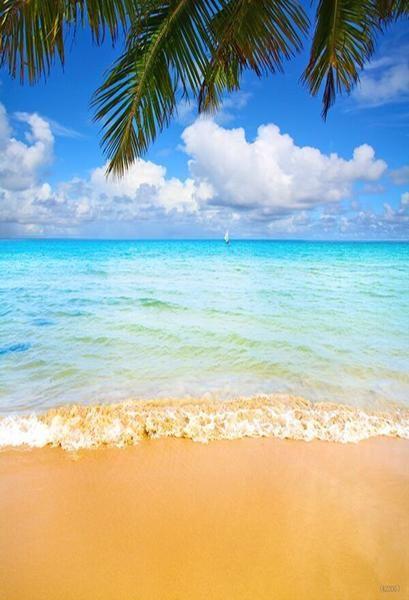 Kate Golden Beach Blue Sea Backdrops For Photography Beach
