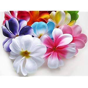 100 Assorted Hawaiian Plumeria Frangipani Silk Flower Heads 3 Artificial Flowers Head Fabric Floral Supplies Wholesale Lot For Wedding Flowers Accessorie Floral Supplies Wholesale Artificial Silk Flowers Silk Flowers