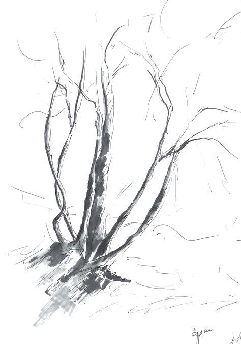 Cali Tree 4