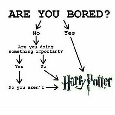 Harry Potter This Is Literally Me Right Now I Should Be Sleeping But Harry P Ha Harry Potter Puns Harry Potter Universal Harry Potter Memes Hilarious