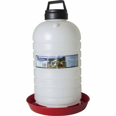 Find Farm Tuff 7 Gallon Top Fill Poultry Fountain In The Chicken Feeders Waterers Category At Tractor Supply Co This Farm Tu Chicken Waterer Poultry Fountain