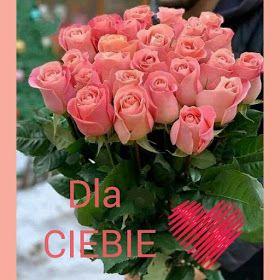 Obrazki Helenki Dla Ciebie Flowers Rose Plants