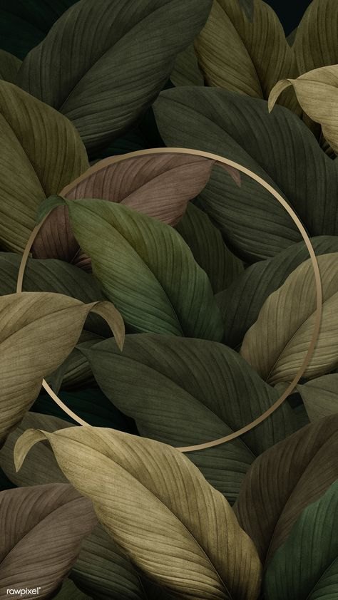 Gold round frame on tropical leaves background | premium image by rawpixel.com / eyeeyeview