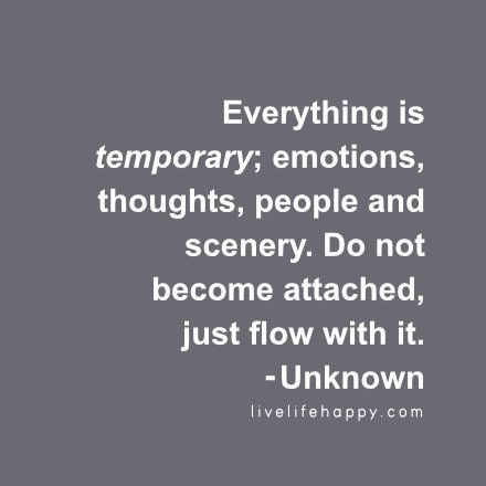 Everything is temporary; emotions, thoughts, people and scenery. Do not become attached, just flow with it. - Unknown