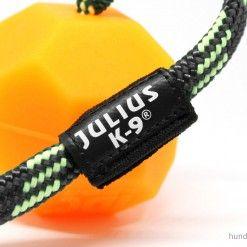 Julius K9 Idc Neon Ball Orange Eckig 60mm Hundewelpen Hundesport Und Hunde