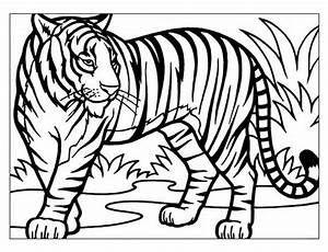 Uomo Tigre Da Colorare.Risultati Immagini Per Disegni Colorare It Uomo Tigre Disegni Da Colorare Disegni Disegnare Tigri