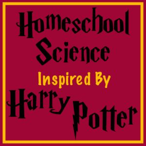 What better to motivate kids to really love science than Harry Potter? Themed resources (some free!) in one place for homeschool science with Harry Potter! Harry Potter Classes, Harry Potter Activities, Harry Potter Classroom, Chemistry Experiments For Kids, Science Lessons, Science For Kids, Summer Science, Science Chemistry, Science Fun