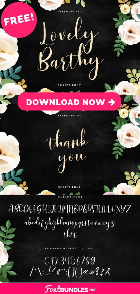 Free Script Font for Graphic Design and Cricut Projects