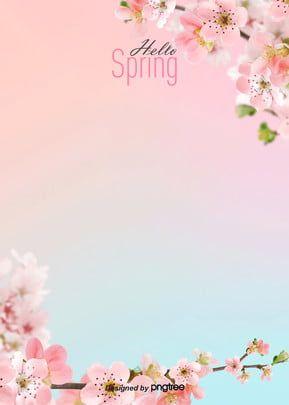 Wallpaper Bunga Sakura Kartun