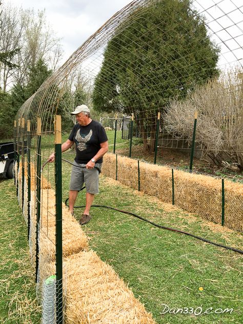 How To Set Up Hay Bale Homesteading Garden Homesteading – The Homestead Survival .Com Source by artsyannietx Hay Bale Gardening, Strawbale Gardening, Container Gardening, Gardening Tips, Homestead Gardens, Farm Gardens, Outdoor Gardens, Garden Trellis, Garden Beds