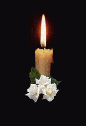"susansagain@3497 on Twitter: ""Rest In Peace Kharly.… """