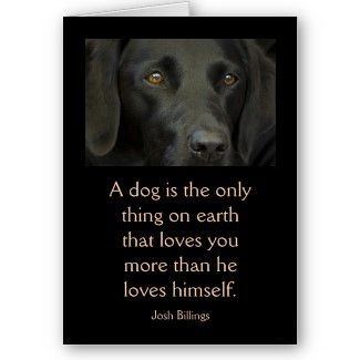 Black Labrador Dog #Greeting #Card with a quote