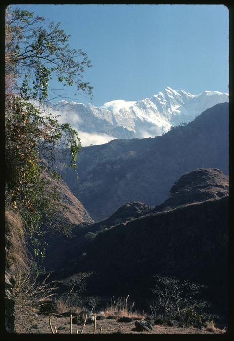 3 weeks in a hikers paradise. Langtang, Nepal