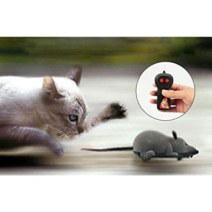 Ferngesteuerte Maus Ratte Spielzeug Fur Kinder Haustiere Katzen Scoolr Katzen Katzenspielzeug Kat Haustierspielzeuge Katzen Spielzeug Ratte Spielzeug
