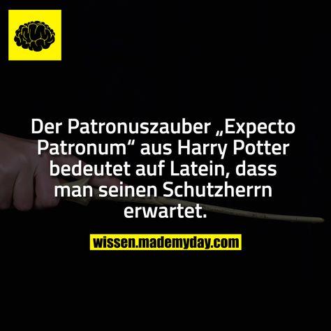 """Der Patronuszauber """"Expecto Patronum"""" aus Harry Potter bedeutet auf Latein, dass man seinen Schutzherrn erwartet."""