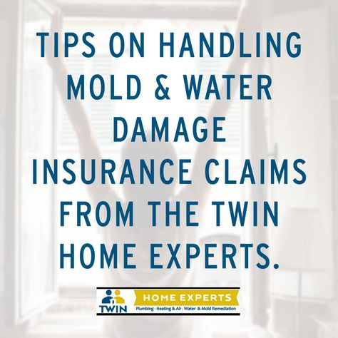 Tips On Handling Mold Water Damage Insurance Claims Flood