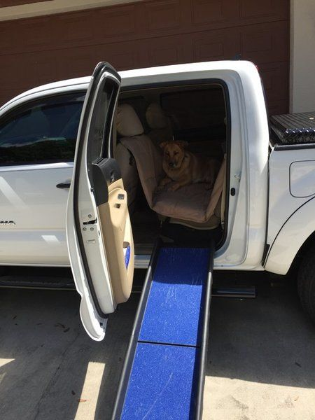 Thoughts of the Access Cab Vs Double Cab for a dog