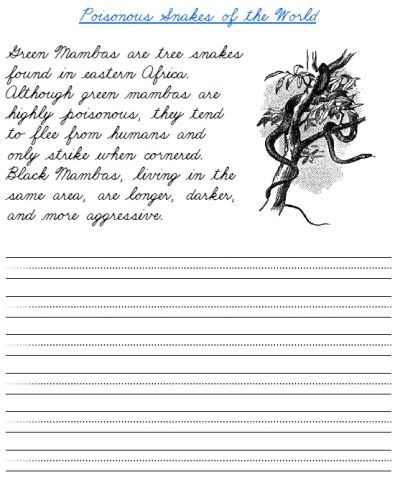 Cursive Paragraphs Worksheets Worksheets Are Definitely The Backbone To Scholars Getting In 2021 Cursive Practice Cursive Writing Practice Sheets Cursive Worksheets Cursive writing practice worksheets 5th