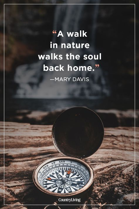 Take your soul to where it belongs with a long hike.  #inspiration #cute #quotes #summer #love #hiking