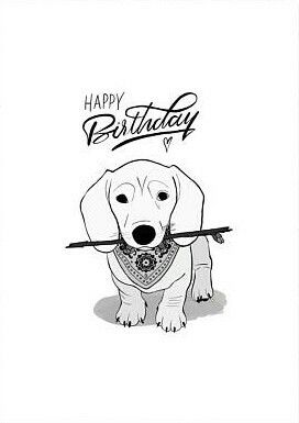 Golden Retriever Black and White Birthday Card