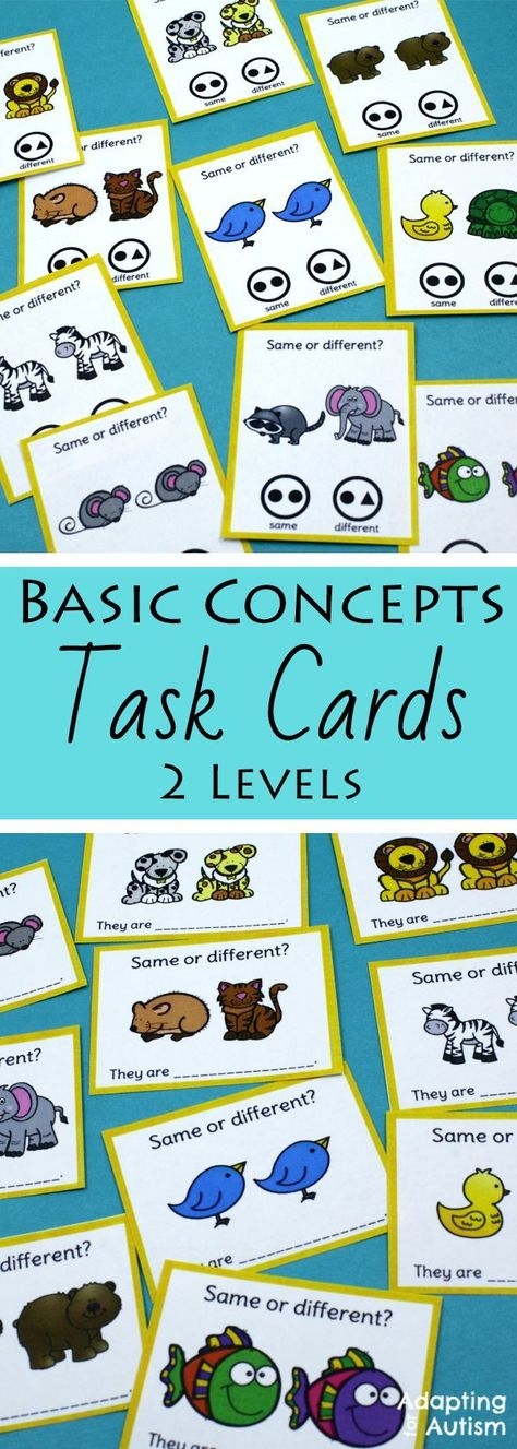 Any Time Task Boxes for Special Education and Autism - Basic Concepts