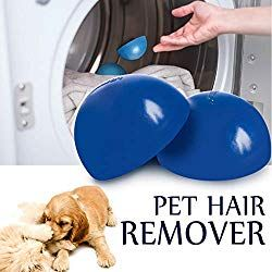 How To Remove Dog Hair On Couch Clothes And Car In 2020 With