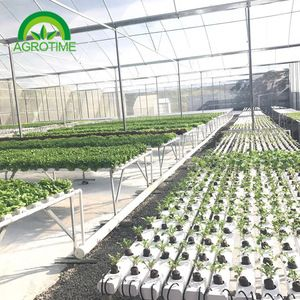 Source Indoor Hydroponics Growing System On M Alibaba Com Hydroponics Indoor Hydroponics Hydroponic Growing