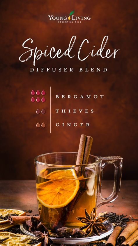 Enjoy the delicious aroma of spiced cider with this diffuser blend! Enjoy the delicious aroma of spiced cider with this diffuser blend! Fall Essential Oils, Essential Oil Diffuser Blends, Essential Oil Uses, Young Living Essential Oils, Doterra Diffuser, Thieves Essential Oil, Young Living Oils, Album Design, Diffuser Recipes
