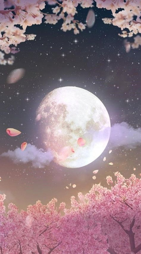 Cherry Blossoms In The Moonlight Art Wallpaper Moon Art Galaxy Wallpaper