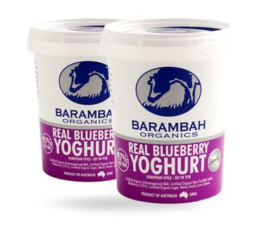 Real Blueberry Yoghurt Barambah Organics Blueberry Organic