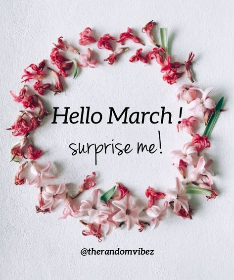 Hello March! Surprise Me! #Happymarchquotes #Marchquotes #2021Marchquotes #March2021quotes #Marchmonthquotes #Monthofspring #Hellomarchgreetings #Marchwishesandquotes #Happymonthquotes #Springmonthquotes #Marchimages #Funnymarchquotes #Hellospringquotes #Marchpicturequotes #Marchpics #Byebyefebruary #Welcomemarchquotes #Welcomespring #Beautifulmarchquotes #Marchcaptions #Instaquotes #Instastories #Marchimagesforfb #Quoteoftheday #Quotes #Quotesandsayings #therandomvibez