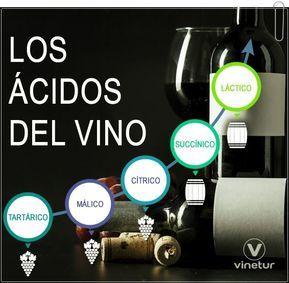 Por Qué Es Tan Importante La Acidez Del Vino Vinos Y Quesos Vino Elaboracion Del Vino