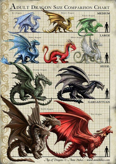 Adult Dragon Size Comparasion Chart | #mythicalcreatures #dragon #dragão #illustration #ilustração #digitalart #artedigital #infográfico #infographic